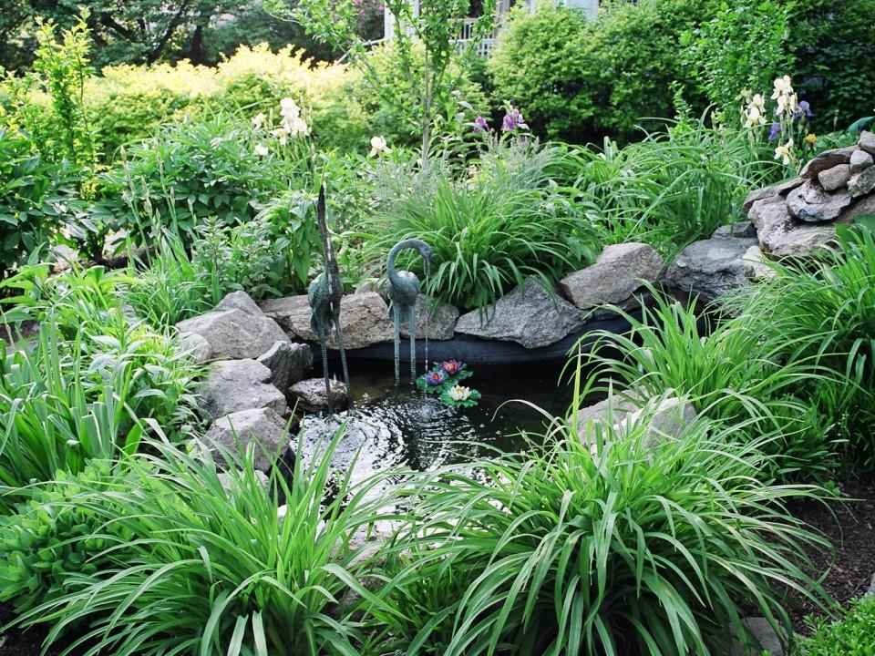 Small Meditation Pond