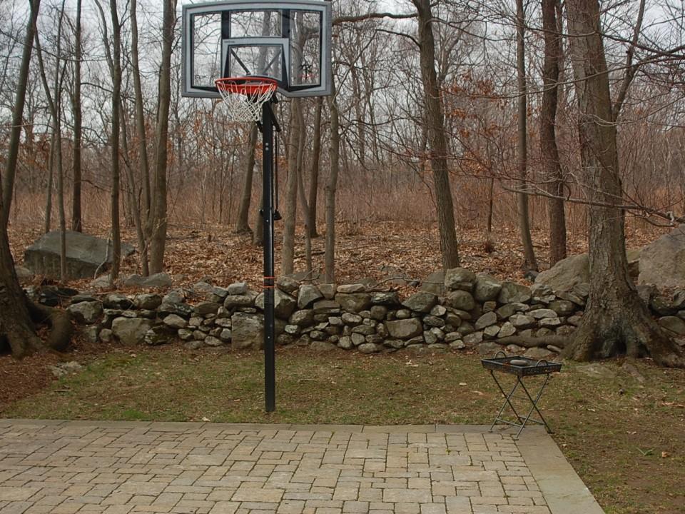 Backyard sports court
