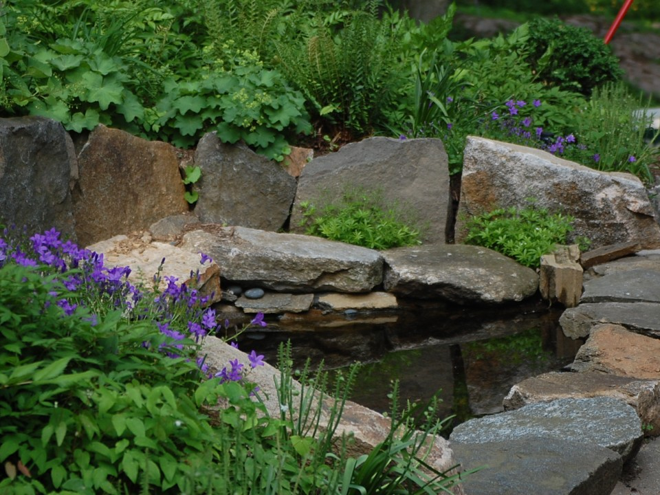 Small Pond and Perennial Garden
