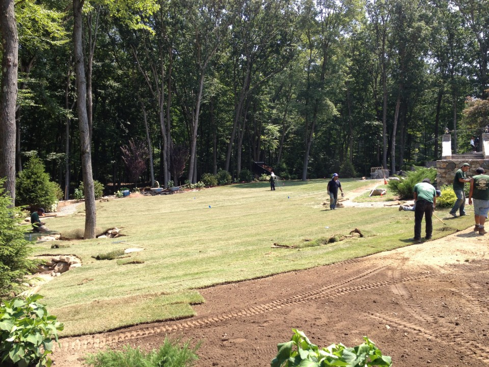 Sod Installation in Progress