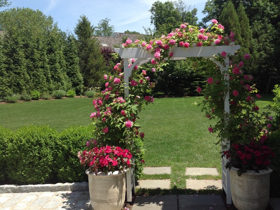 Rose Garden with trellis and summer planters