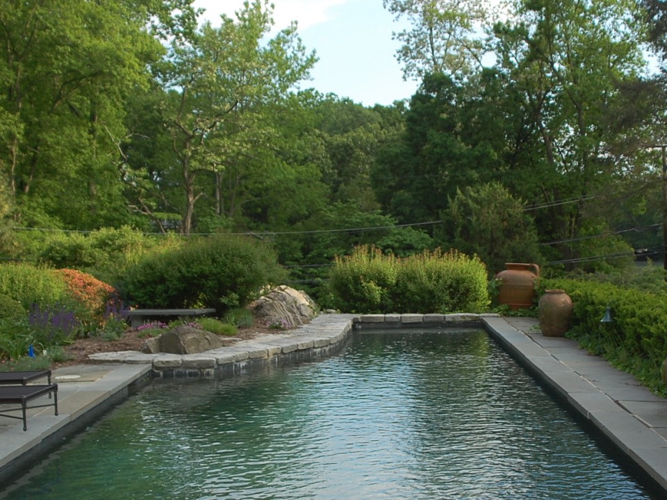Bluestone pool deck with natural stone coping
